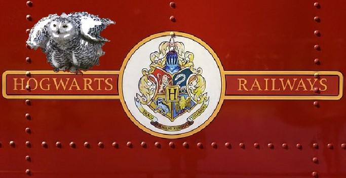 Juvenile Fantasy Hop on board the Hogwart Express with Hedwig