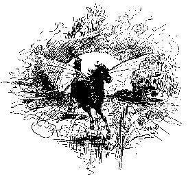 Horse puck